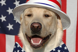 fourth-of-july-safety-tips