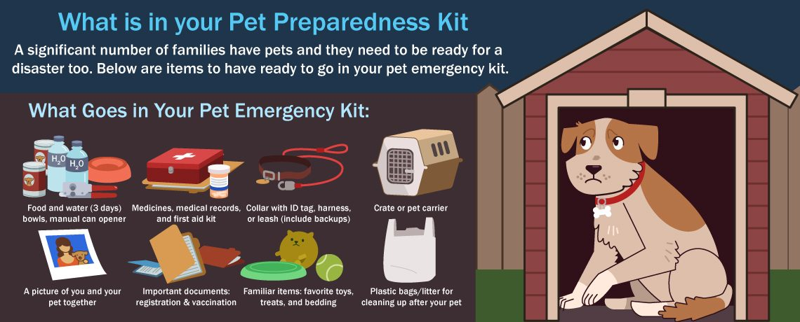 What is in your Pet Preparedness Kit